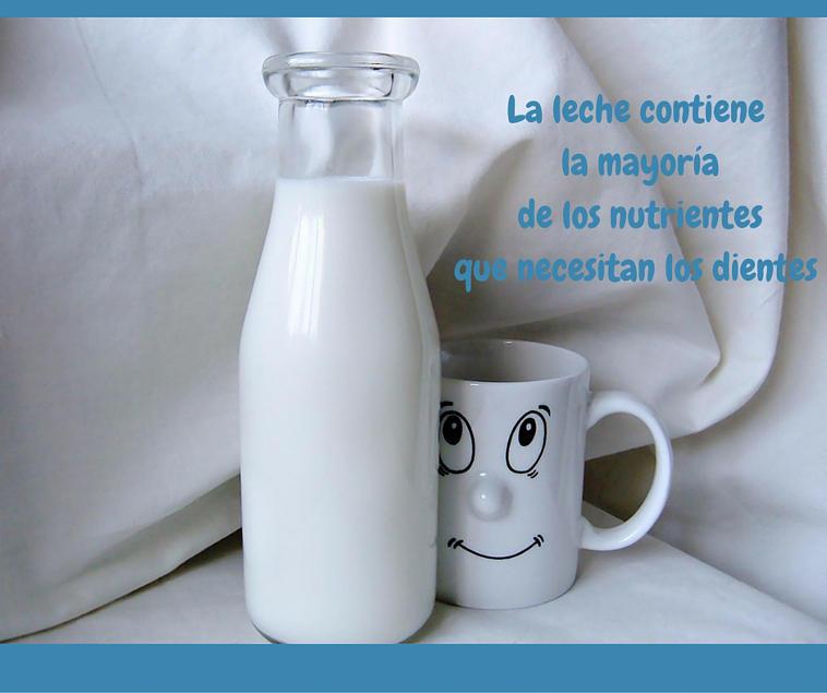 la leche y los dientes tienen todos los nutrientes necesarios